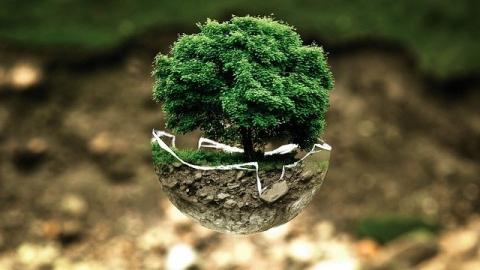 L'importance de l'écologie dans la chaîne de production